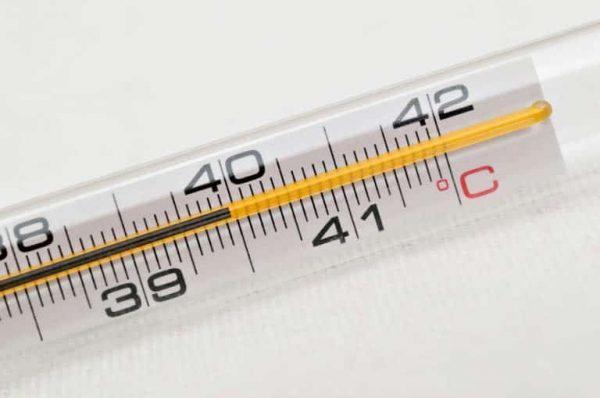 חם מתחמם קורונה – שירות דיגיטלי לצד יחס אישי